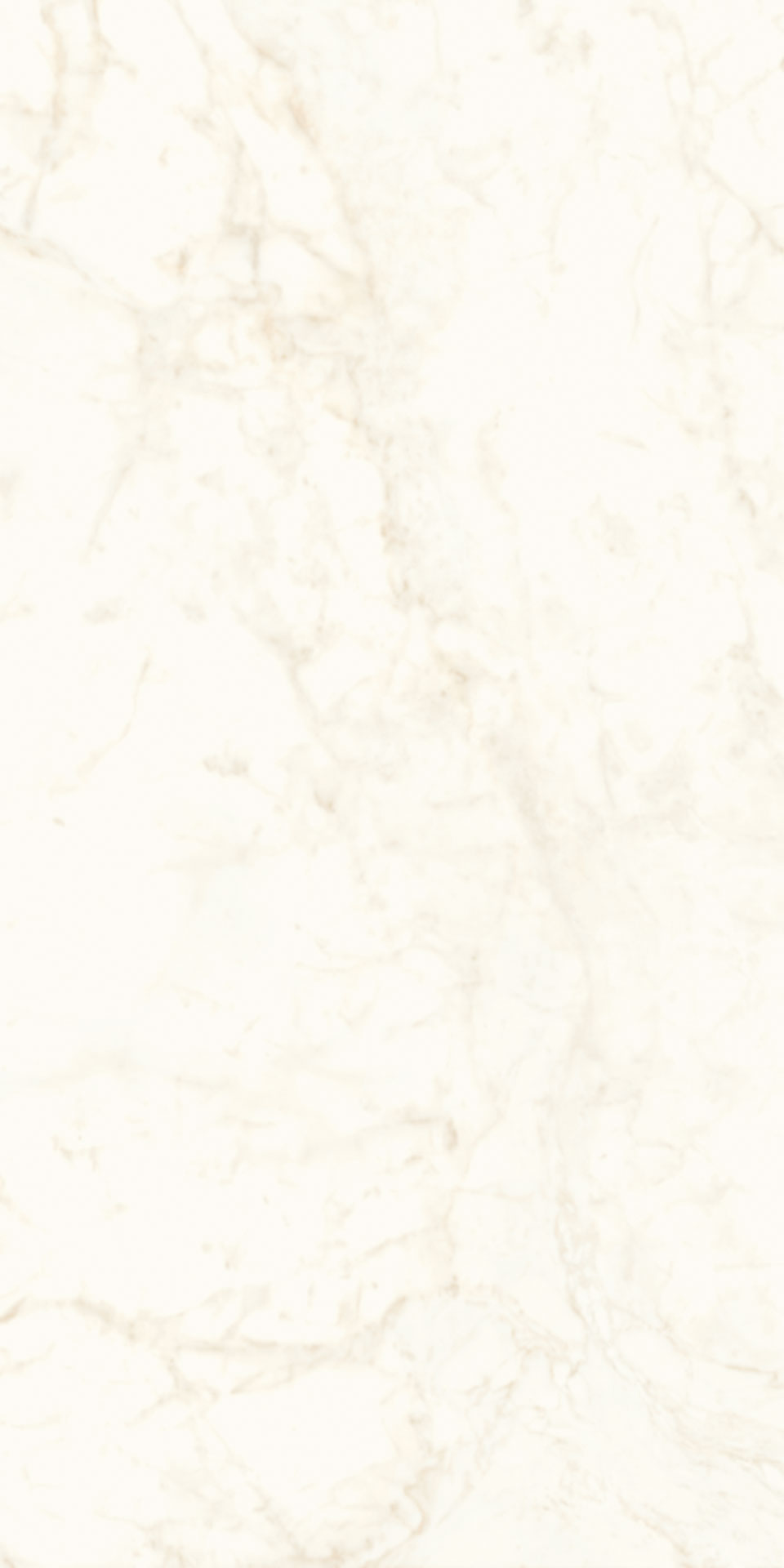 120x240-4-large-sized-9mm-polished-finishing-calacatta-delicato-porcelain-slab