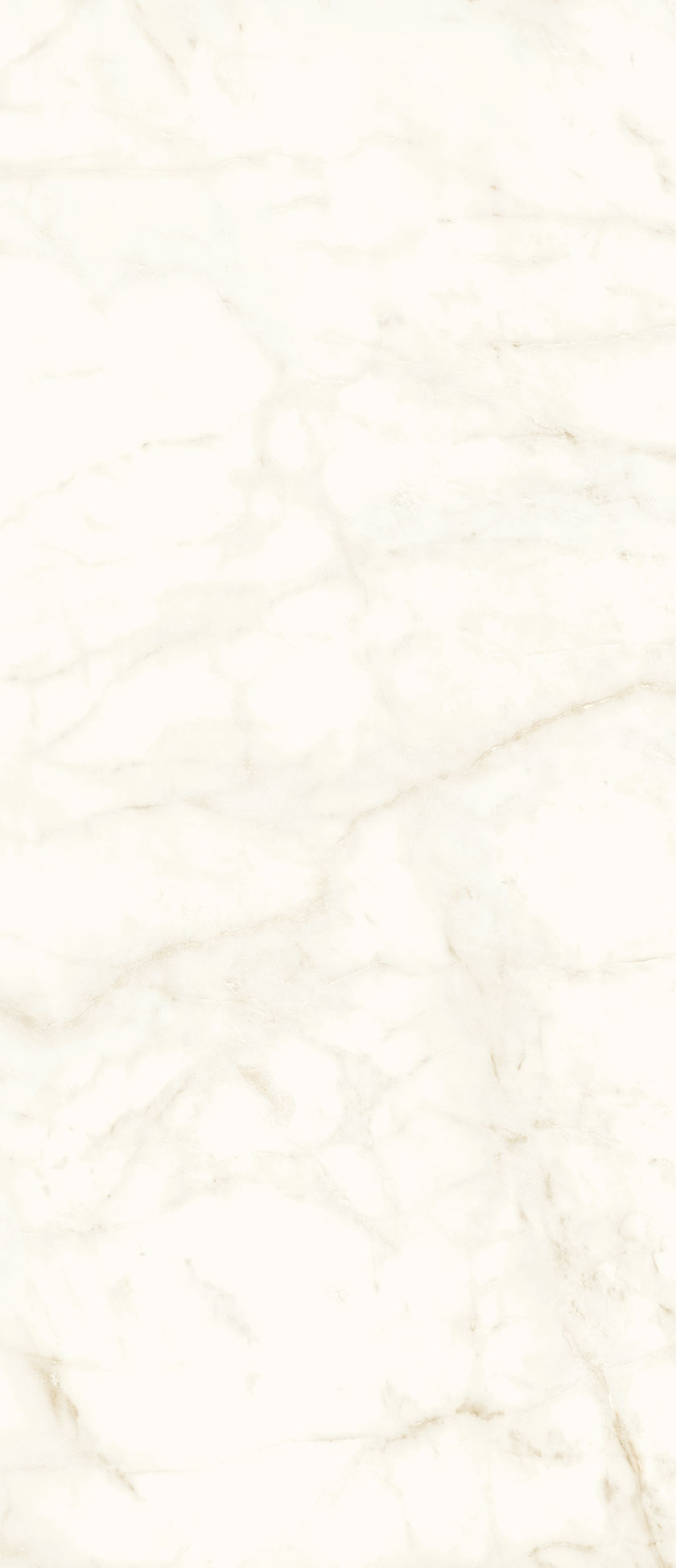 120x278-2-silk-finish-calacatta-delicato-marble-effect-slab