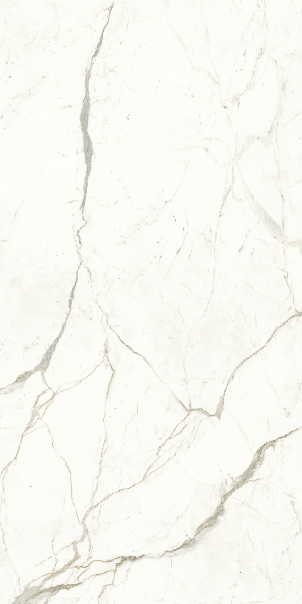 120x240-10-atlas-plan-calacatta-prestigio-large-sized-tile