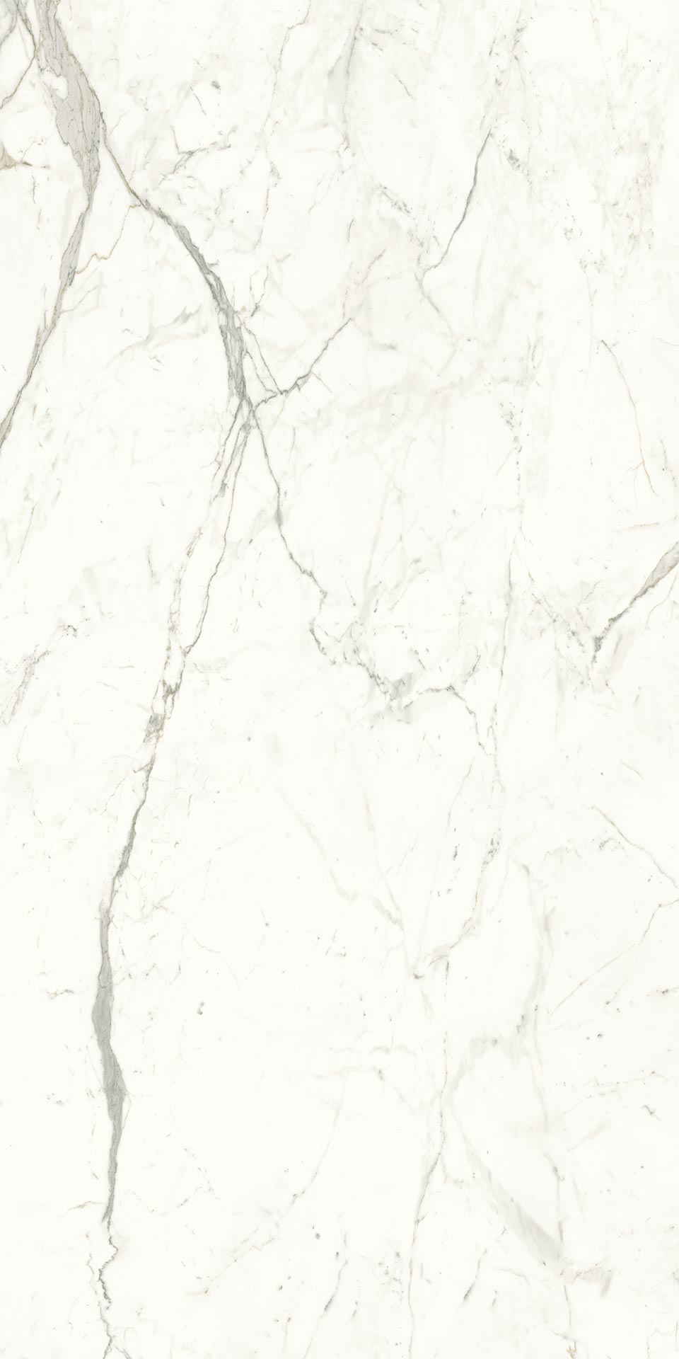 120x240-6-atlas-plan-apuan-marble-effect-large-polished-tile