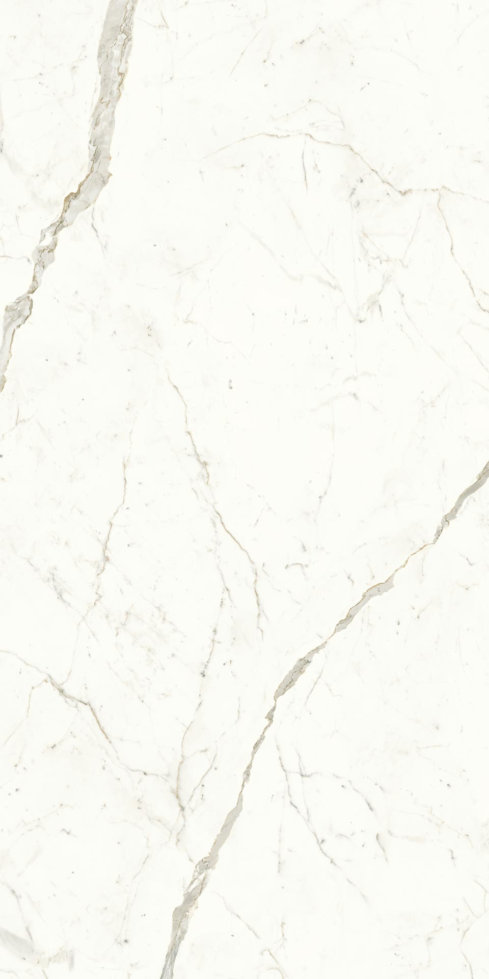 120x240-8-calacatta-prestigio-polished-9mm-porcelain-slab