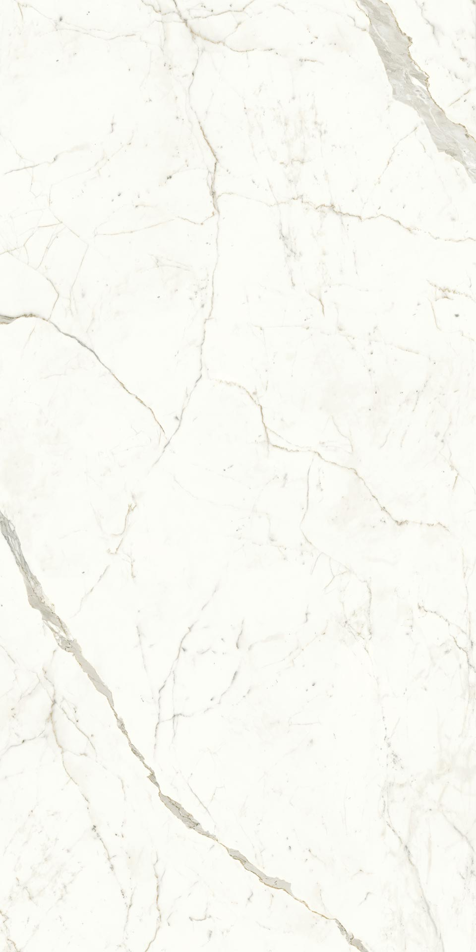 120x240-9-calacatta-prestigio-9mm-polished-porcelain-tile