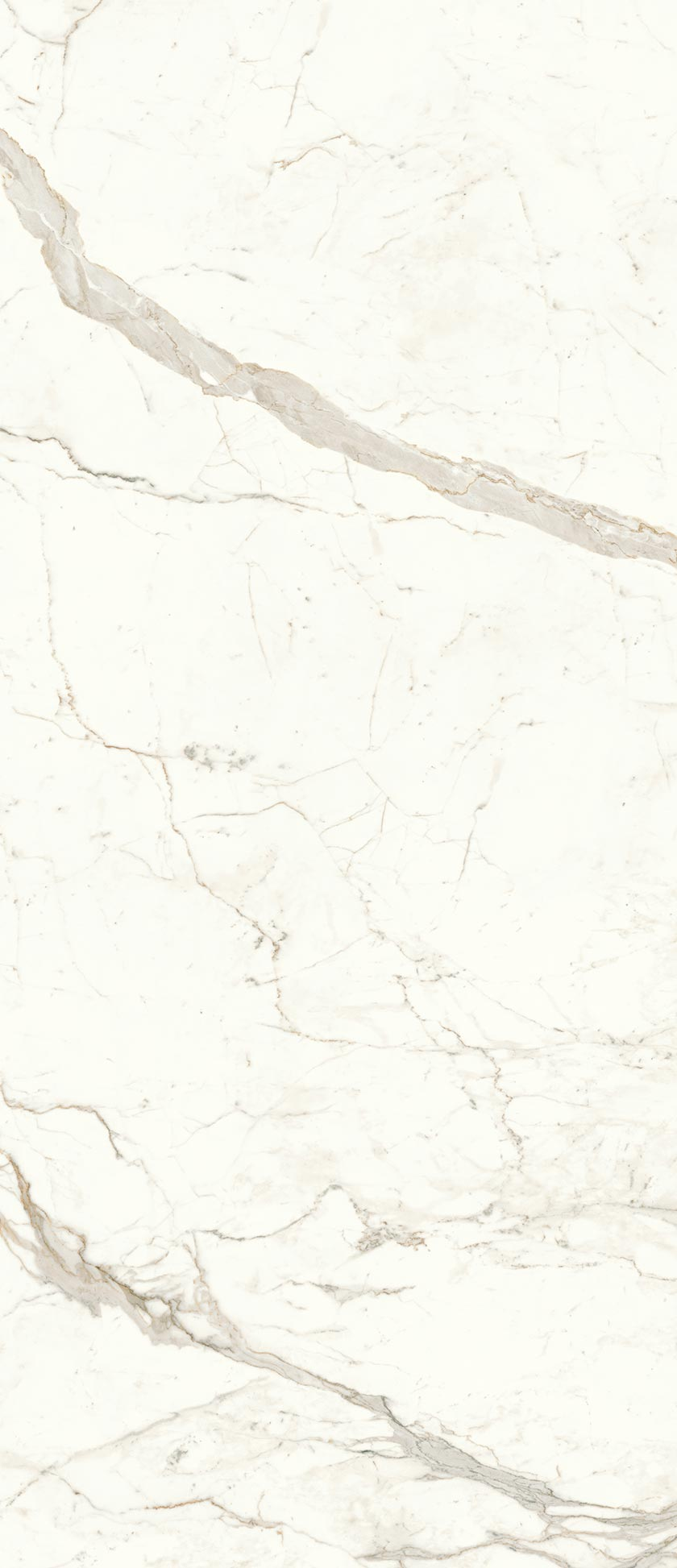 120x278-2-calacatta-prestigio-6mm-matte-large-sized-porcelain-tile